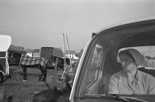 BELGIUM. Massemen. 27/10/1979: Poney and horse fair.